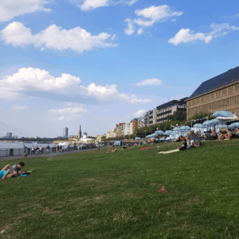 Picnic by the Rhine in Dusseldorf